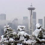 Seattle Needle Snow